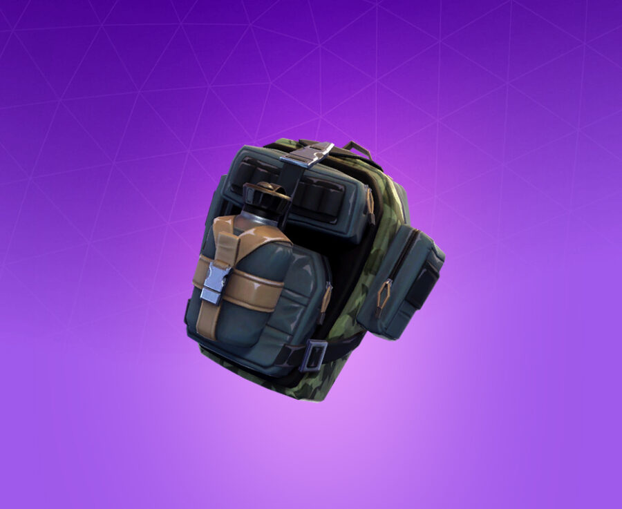 True North Back Bling