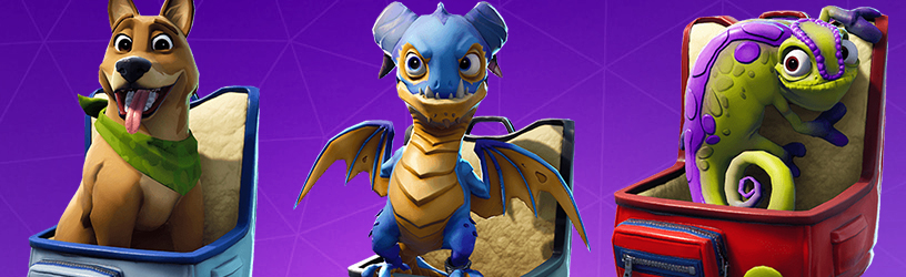Fortnite Pets List – All Available, Names & What Do They Do