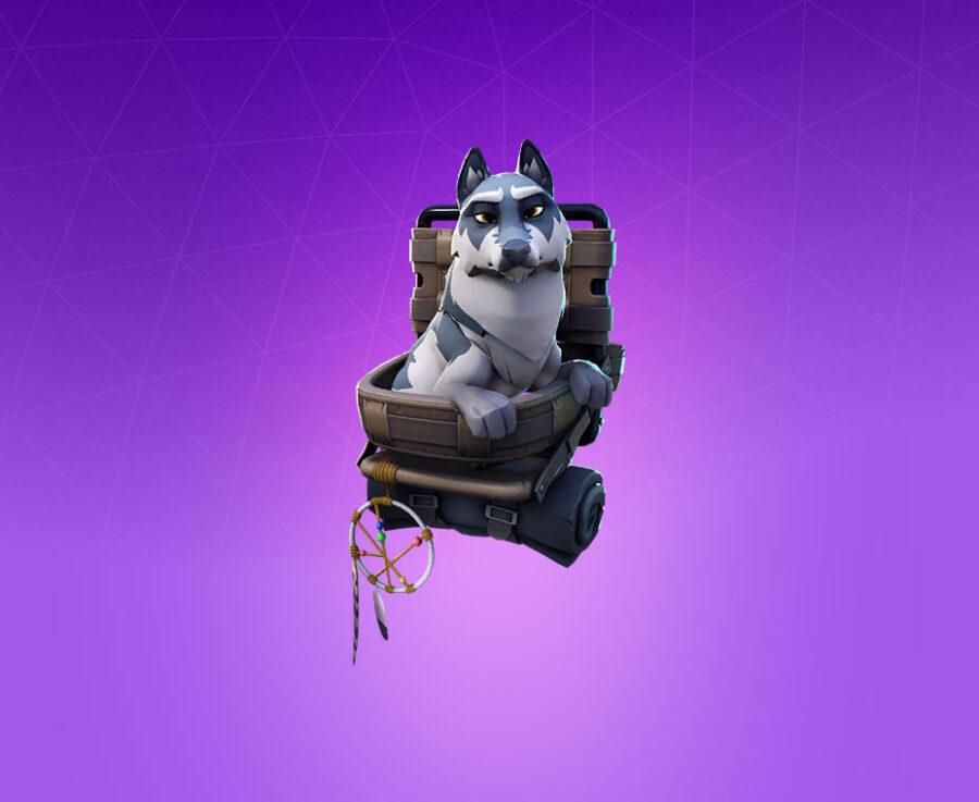 Remus Pet