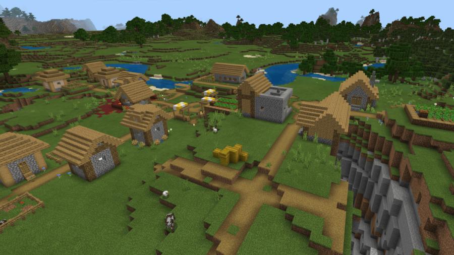 A Minecraft village.