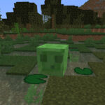 Slime in swamp biome