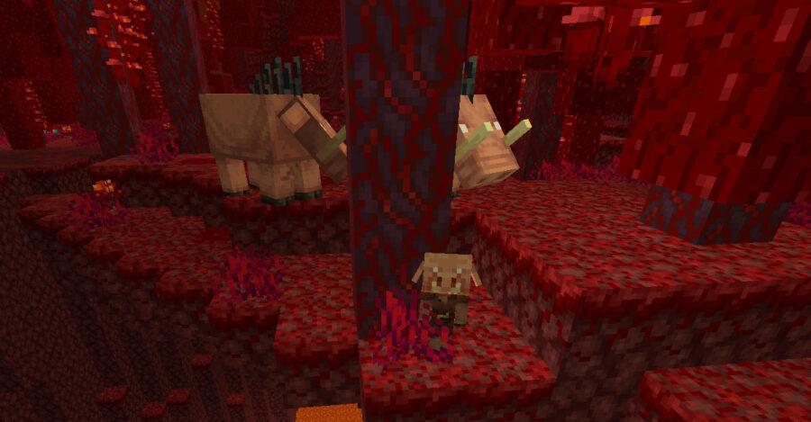 Baby Piglin and Hoglins in Minecraft