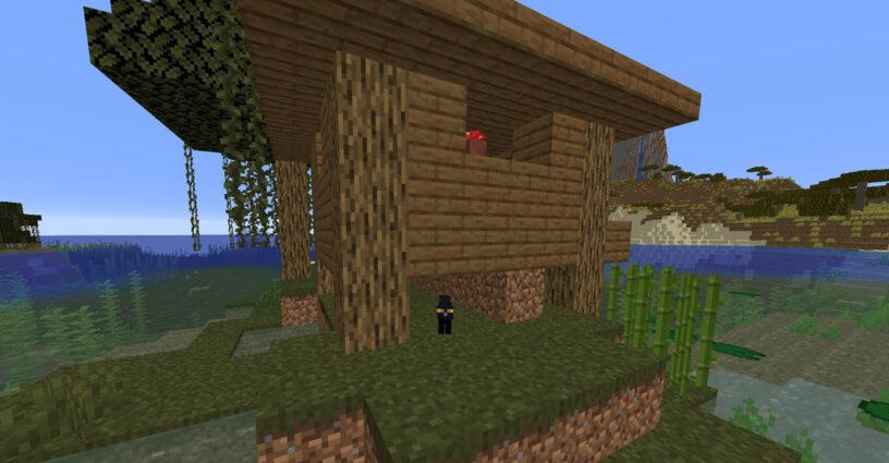Black cat under a witch hut in Minecraft