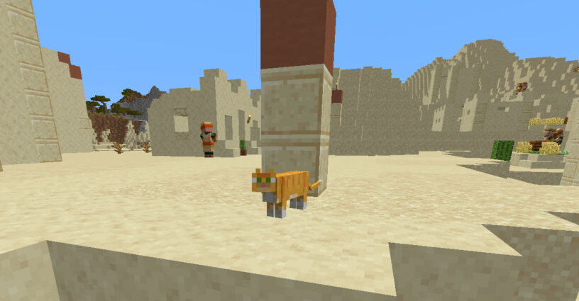 Cat standing in a desert village in Minecraft