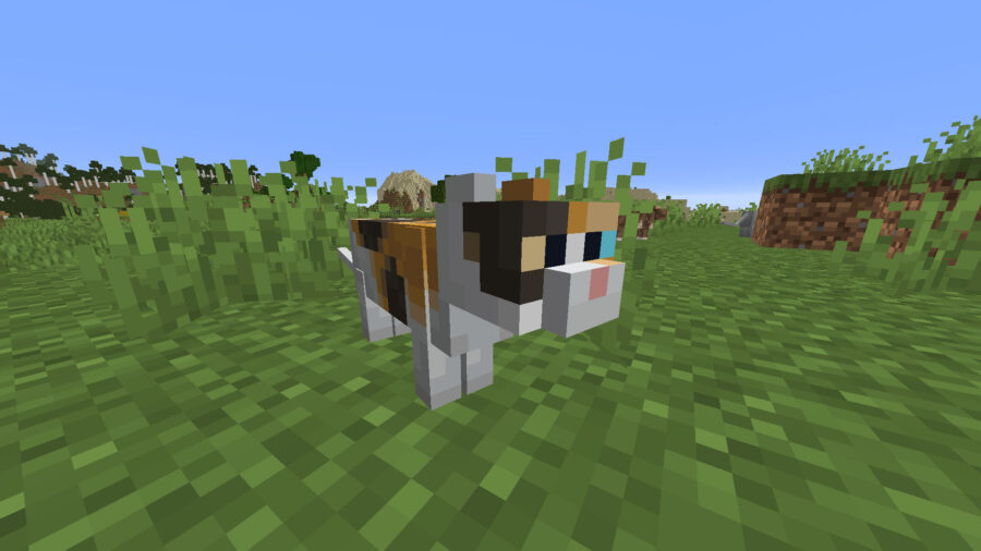 How to tame a cat in Minecraft