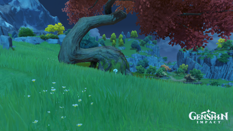 Screenshot of the location of the treasure in the quest Tree Who Stands Alone in Genshin Impact.