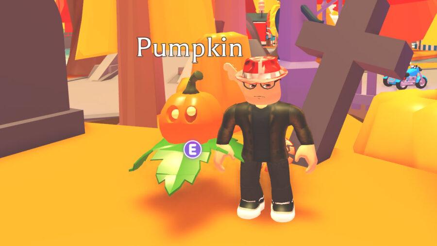 Adopt Me pumpkin pet in game