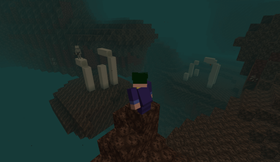 Barish looking at some bones in a Minecraft Soul Valley.