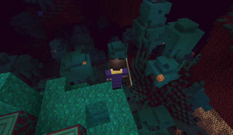 Barish balancing on a tree in a Minecraft Warped Forest.