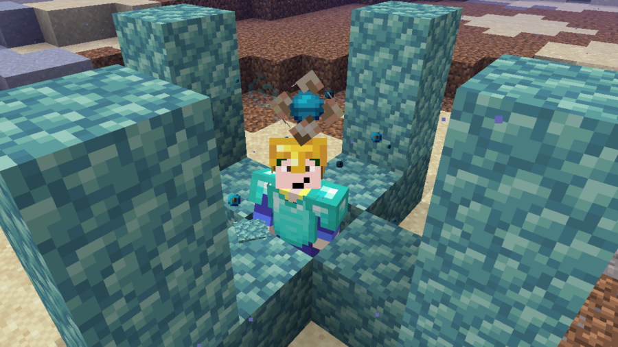 Barish underneath a Minecraft Conduit.