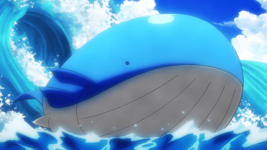 Image of Wailord in Pokemon Anime.