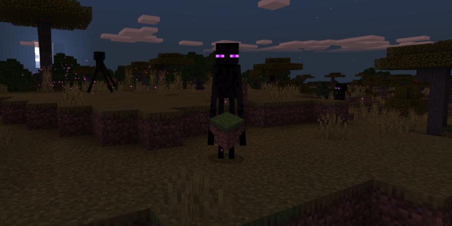 An enderman holding a grass block.