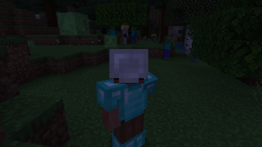 A screenshot of Steve about to get into a fight.