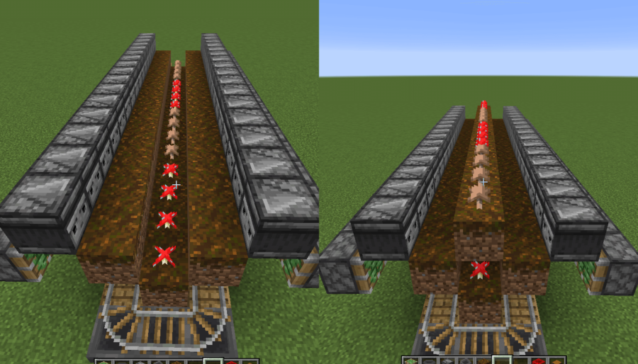 A double screenshot of the placed mushrooms of the mushroom farm.