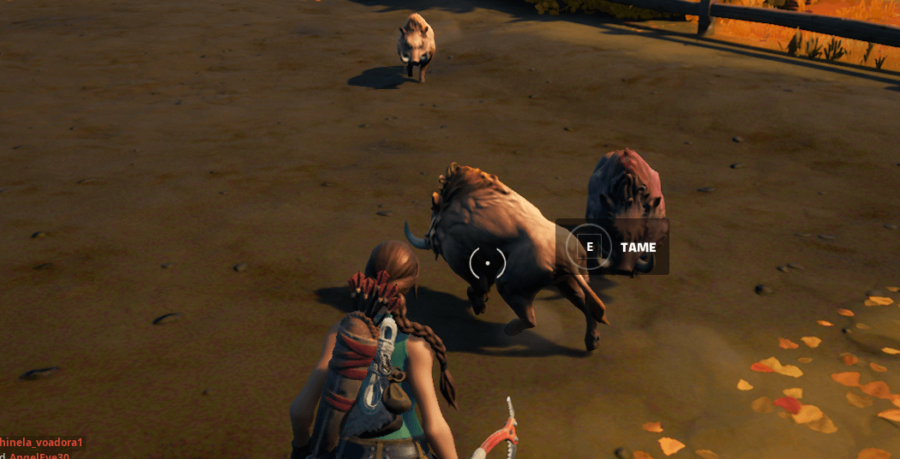 A Fortnite character taming a Boar.