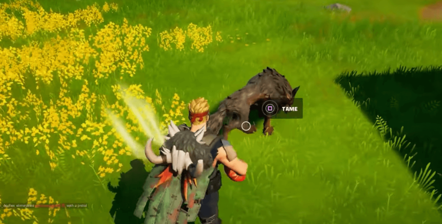 A Fortnite character taming a wolf.