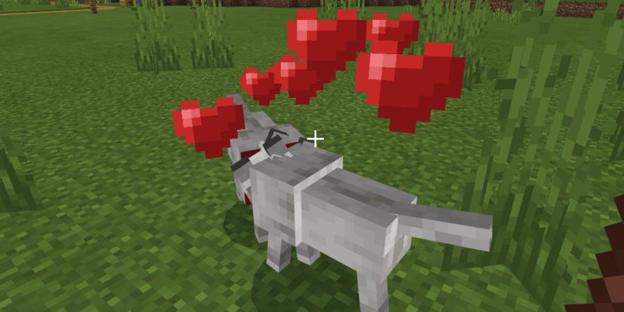 Wolves breeding in Minecraft.