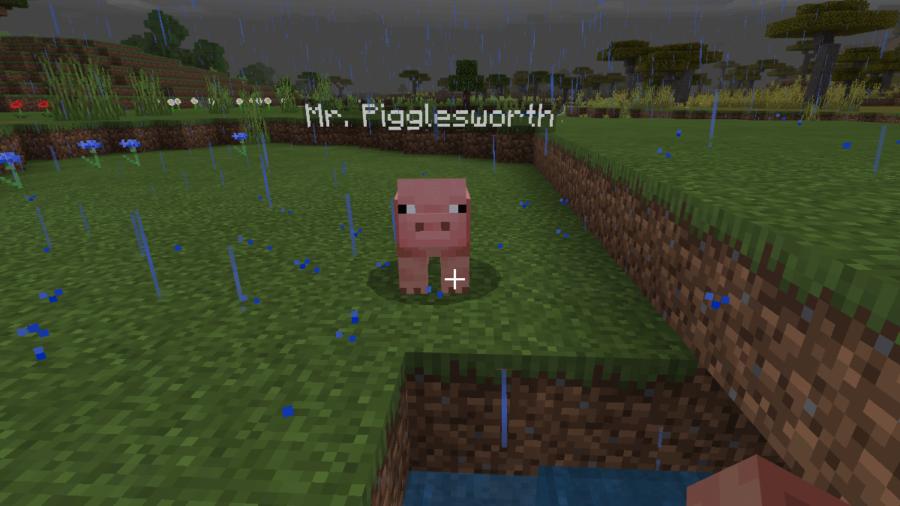 A Pig in Minecraft named Mr. Pigglesworth.