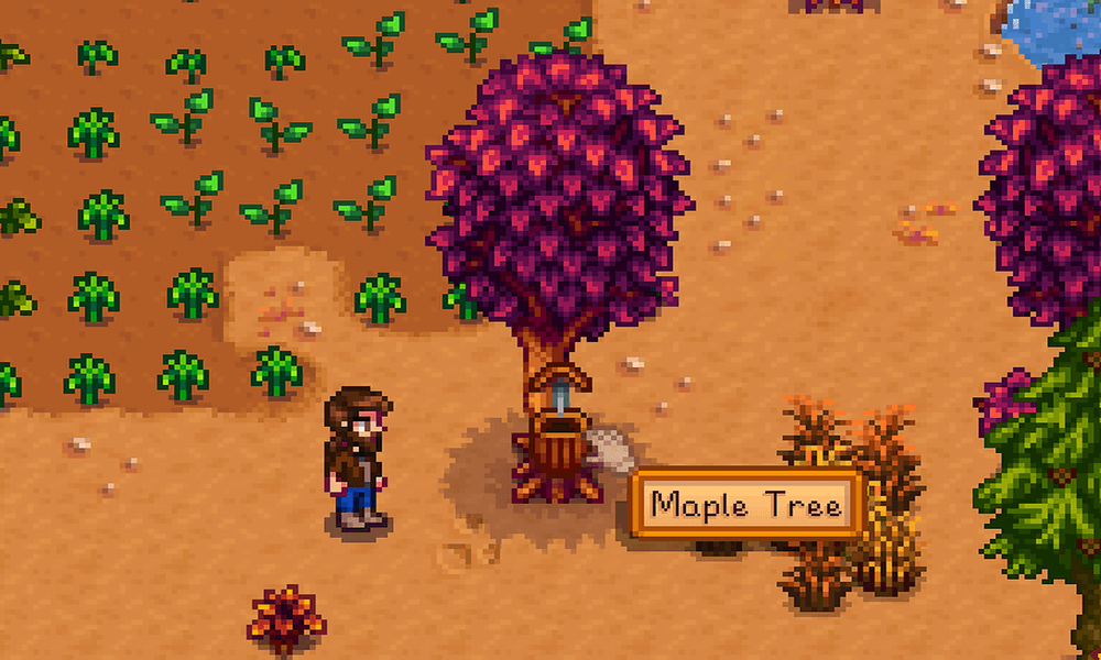 How to get Maple Syrup in Stardew Valley - Pro Game Guides
