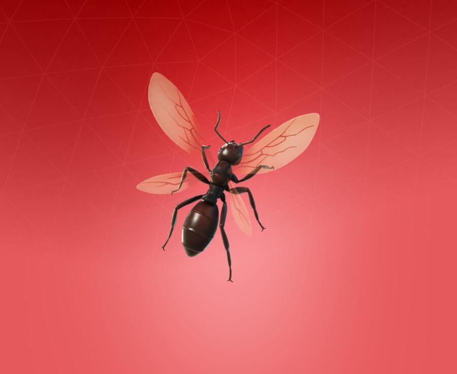 Ant-Tonio Back Bling