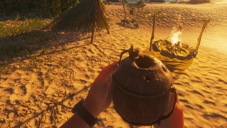 A coconut flask in Stranded Deep.