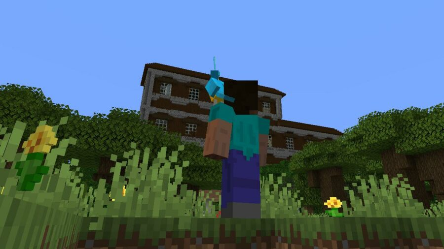 A parrot and Steve looking at a Woodland Mansion.